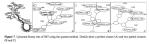 ismir2009-proceedings.pdf (page 544 of775)